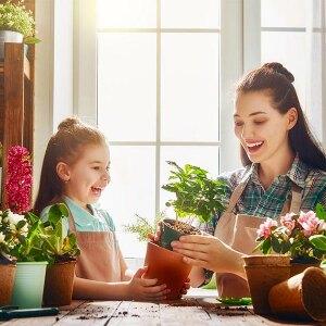 Uprawa ziół w domu – poradnik dla początkujących