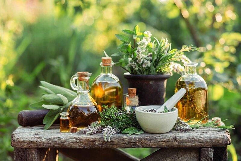 Olej z konopi – poznaj jego właściwości